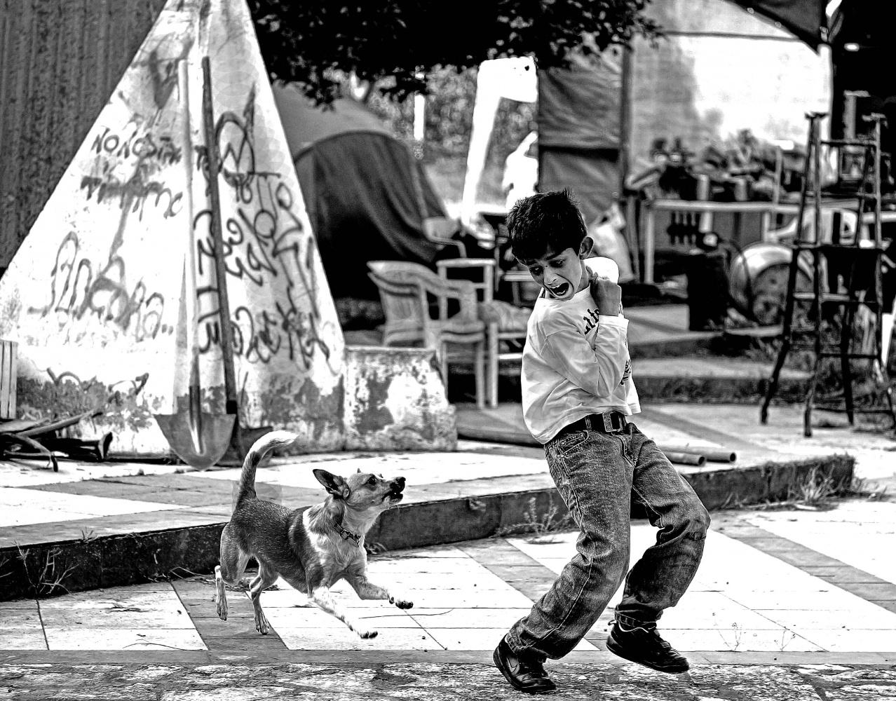 copyright Aldo Valenti - www.aldovalenti.it